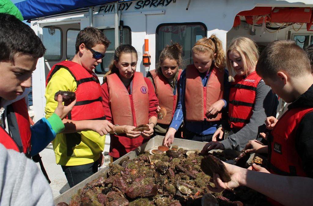 Glenburnie School and the Huntsman Marine Science Centre